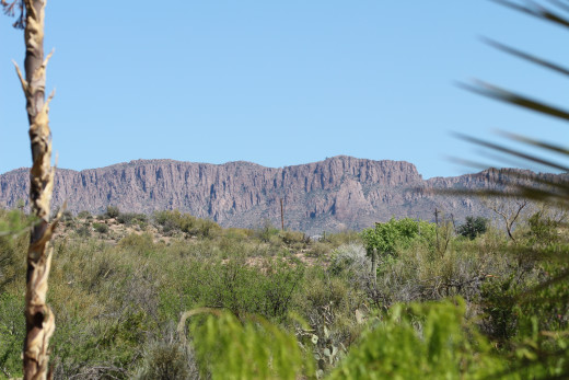 Stunning desert vistas surround the visitor.