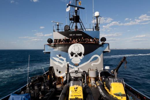 A Sea Shepherd anti-whaling team.
