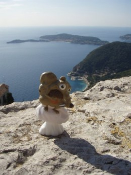 My little friend enjoying the view from the top of EZE.