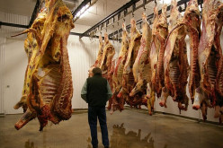 The Buddhist View on the Moral Dangers of Eating Meat