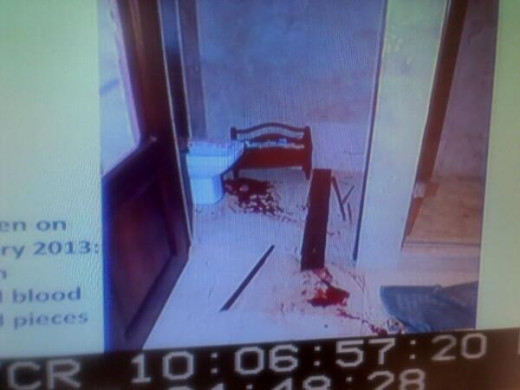 Magazine rack laying down with the blood around it as if it was were it must have been on the night of Reeva's shooting