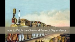 The Alcoholic Housewife/How to Ditch the Chemical Train of Dependency