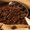 The Green Bean: Green Coffee Bean as a Superfood and the Health Benefits They Provide