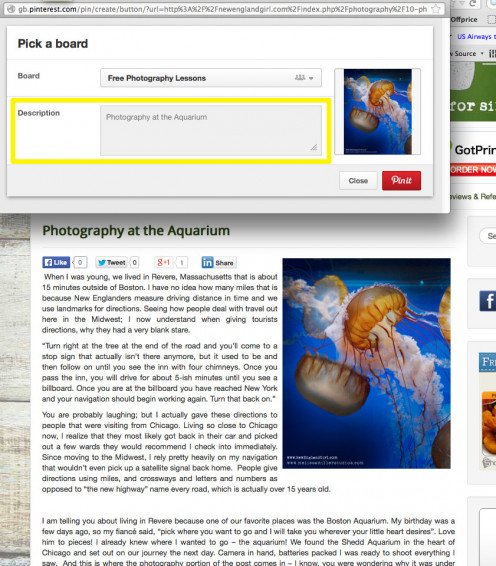 What you add in your image descriptions will appear when the image is pinned