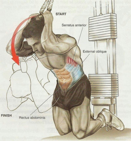 Abs muscle contraction