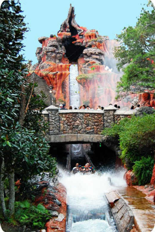 A five story+ drop provides a refreshing finale to Magic Kingdom's Splash Mountain experience.