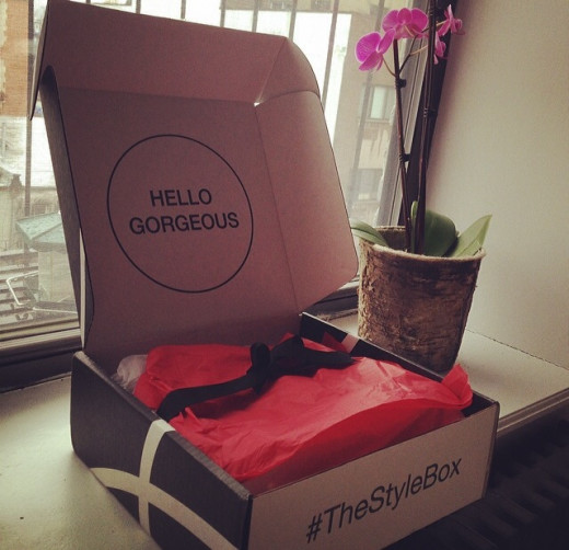The Style Box, still boxed.  What's inside?!