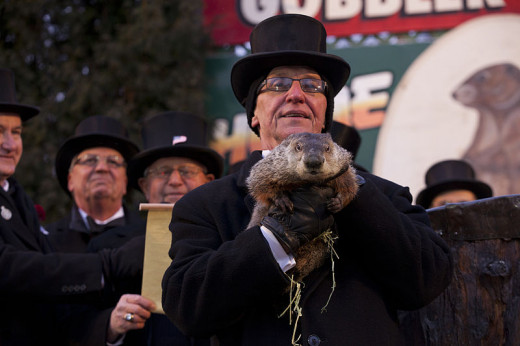 The Groundhog Club President holds up the '127-year-old prognosticator' Punxsatawney Phil