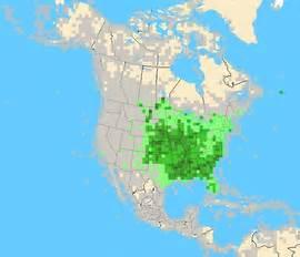 eBird map