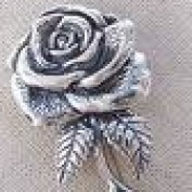 Silver Rose profile image
