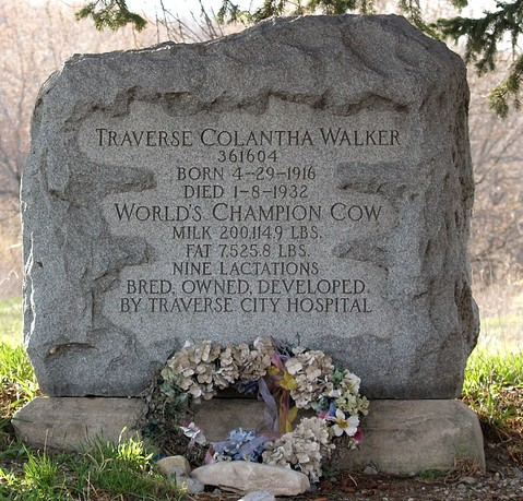 The gravestone of Traverse Colantha Walker