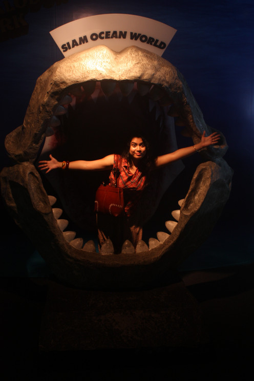 Plunge Deeper Inside the Siam Ocean World
