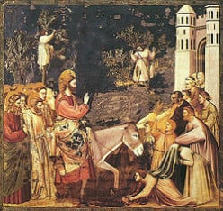 "Bible: What Does Mark 11-12 Teach Us About Jesus' Triumphal Entry, the Cursing of the Fig Tree, and the Widow's ""Mite""?"
