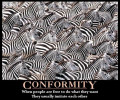 Social Psychology: Conformity,Social Cognition, the Psychology of Helping, and Correlational and Experimental Research