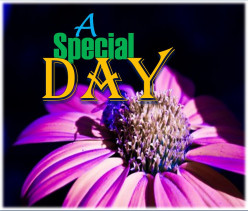 A Special Day | Poem