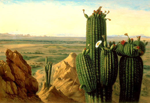 The desert is only peaceful in a patinting such as this by Henry Cheever Pratt. J.A. Jance's Sheriff Johanna Brady knows it often the scene of a brutal crime.