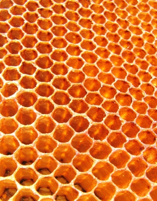 Honey contains natural antibiotics that help kick acne to the curb.