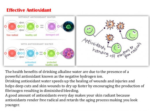 Alkaline water acts as an antioxidant that binds to free radicals, rather than have the cell bind to free radicals. This protects the cell from damage.