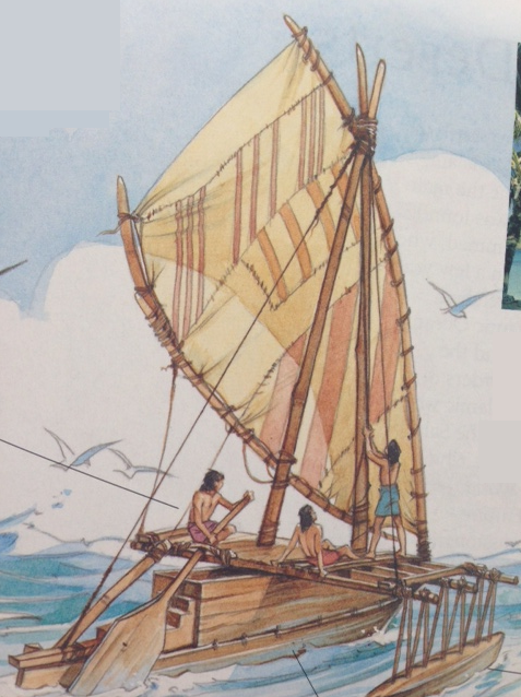Polynesian canoes were up to 30m long. They were built with two hulls or a single hull and an outrigger. The sails were made from coconut-palm lead matting stitched together.