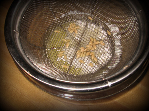 If you don't have a juicer, juice 1-2 lemons using a strainer to catch the seeds.