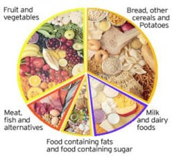Importance of Balanced Diet for Healthy Body and Mind
