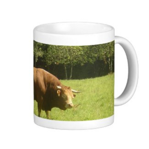 I have a range of Limousin bull and cow gifts - take a  look at my 'The Boss' range! Lots of other Limousin images too - sunflowers, landscapes, flowers ......