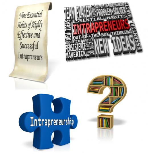 Intrapreneurs and Intrapreneurship Programs for Organizations