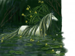 Mythical Creatures - Kelpie