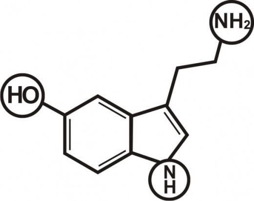 Molecular Structure of Serotonin