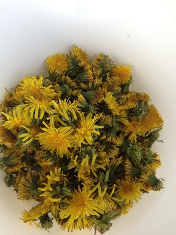 Pick approximately 1 quart of dandelion blossoms.