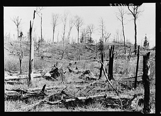 Civil War Raiders had caused burned all that was standing on the farm...