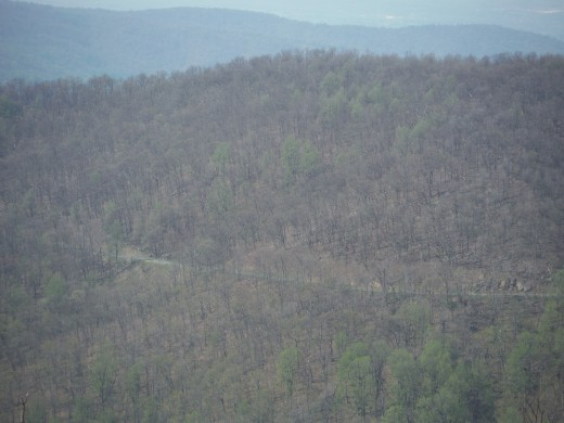 Mid Spring (early May 2014) as seen from the summit, elevation around 2,900 feet.