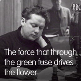 poetry analysis essay dylan thomas