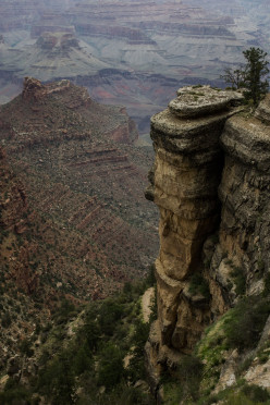 Activities for Visitors of the Grand Canyon's South Rim