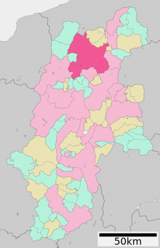 The dark pink area is Nagano City; that plus the pastel-colored sections  make up the Nagano Prefecture.
