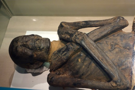Egyptian Mummy, Late Dynastic to Early Ptolemaic period, 525-200 BC - Albany Institute of History and Art