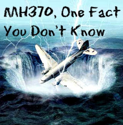 Flight MH370 : The Tragedy, The Mystery, The Fumbling Circus. One Fact You Don't Know.