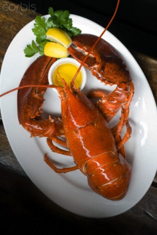 Red Lobster, one of The 10 Most-Favorite Restaurants in America.