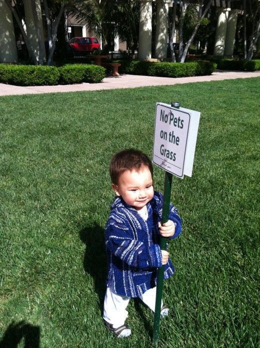 This boy knows just what good this sign is.