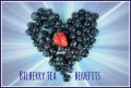 Health Benefits of Bilberry Tea