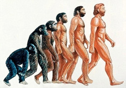 When it comes to the evolution of humanity, this is the view that is conjured up in most of our minds. But there is a fundamental flaw in this that most of us are unaware.