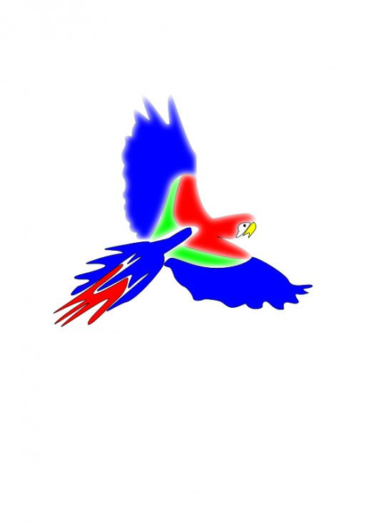 colorful parrot clipart