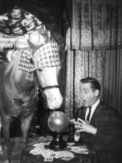 Mister Ed and Alan Young in 1964.