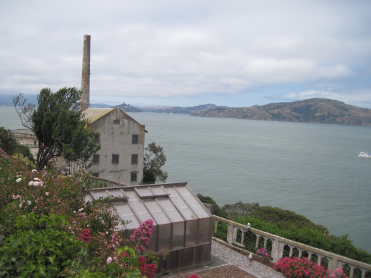 Greenhouse in foreground, Angel Island in background.
