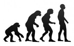 The Theory of Macro Evolution is a Religious Belief