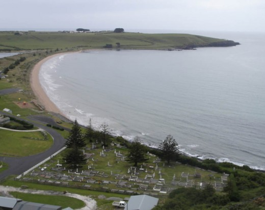 The 'Dead Centre' of Stanley, with Norfolk Island Pines