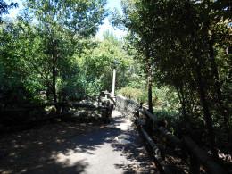 Tom Sawyer's Island in Magic Kingdom