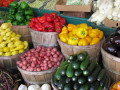 Rawism! The Living Foods Diet