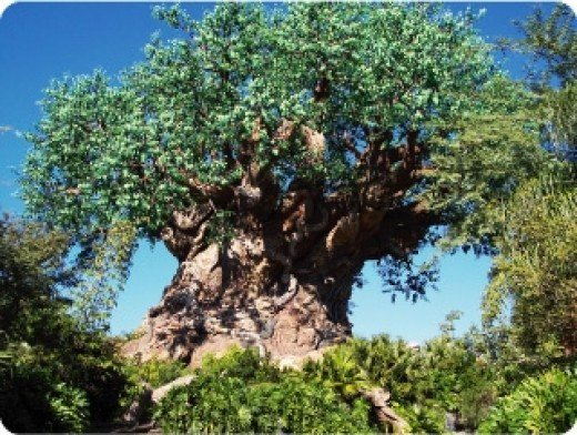 The Imagineered 'Tree of Life' serves as Animal Kingdom's icon and houses (beneath it) one of the park's more popular attractions: It's a Bug's Life.