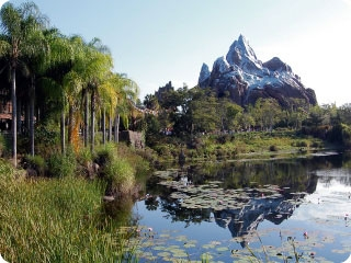 Beyond superb attractions where animals are the stars, Animal Kingdom features many of the best traditional theme park attractions in Disney World, like Expedition Everest pictured here.